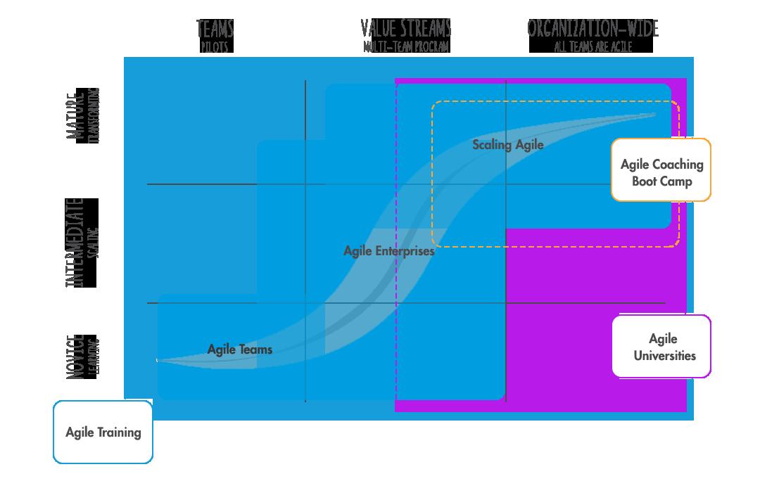 agile transformation services
