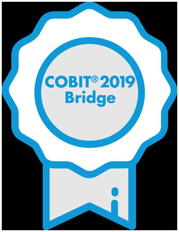 cobit 2019_bridge